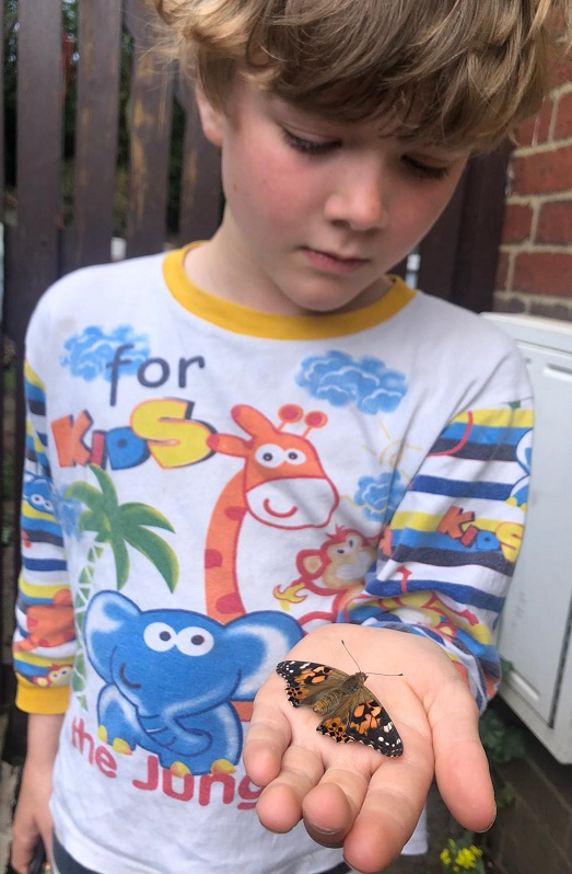 M holding a painted lady butterfly